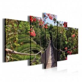 Obraz na plátne viacdielny - OB3776 - Visutý most v džungli
