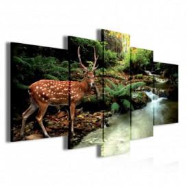 Obraz na plátne viacdielny - OB3785 - Jeleň v lese