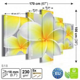 Obraz na plátne viacdielny - OB3786 - Žltobiely kvet