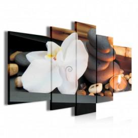 Obraz na plátne viacdielny - OB3788 - Biely kvet a kamienky