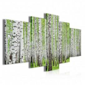 Obraz na plátne viacdielny - OB3843 - Brezový les