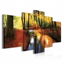 Obraz na plátně vícedílný - OB3846 - Potok v podzimním lese