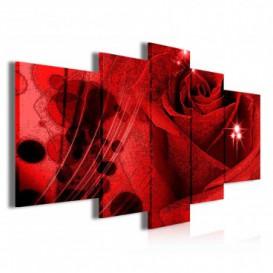 Obraz na plátne viacdielny - OB3856 - Červená ruža