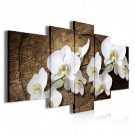 Obraz na plátne viacdielny - OB3890 - Biele kvety