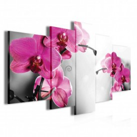Obraz na plátne viacdielny - OB3892 - Ružové kvety