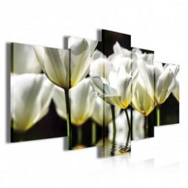 Obraz na plátne viacdielny - OB3900 - Biele kvety