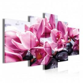 Obraz na plátne viacdielny - OB3906 - Ružové kvety s kamienkami