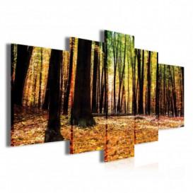 Obraz na plátně vícedílný - OB3909 - Jesenný les