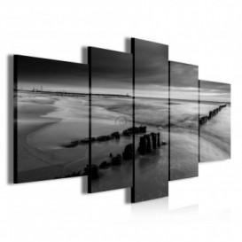 Obraz na plátne viacdielny - OB3914 - Čierno biele pobrežie