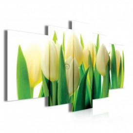 Obraz na plátně vícedílný - OB3917 - Žluto bílé tulipány