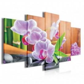 Obraz na plátne viacdielny - OB3924 - Ružové kvety a kamienky