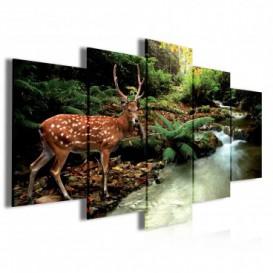 Obraz na plátně vícedílný - OB3942 - Jelen v lese