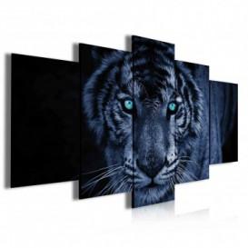 Obraz na plátne viacdielny - OB3946 - Čiernobiely tiger