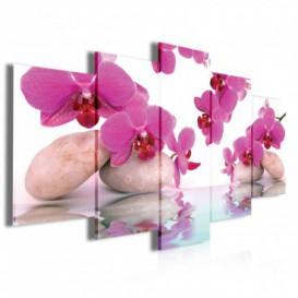 Obraz na plátne viacdielny - OB3950 - Ružový kvet