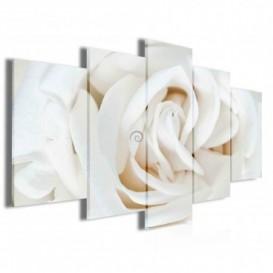 Obraz na plátne viacdielny - OB3992 - Biela ruža