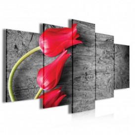 Obraz na plátne viacdielny - OB3994 - Červené tulipány