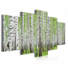 Obraz na plátne viacdielny - OB3995 - Brezový les