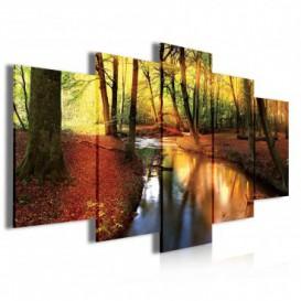 Obraz na plátne viacdielny - OB3997 - Potok v jesennom lese