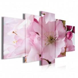 Obraz na plátne viacdielny - OB4011 - Ružový kvet