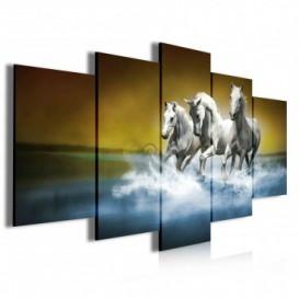 Obraz na plátně vícedílný - OB4035 - Koně
