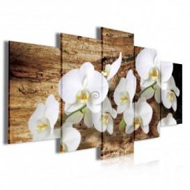 Obraz na plátne viacdielny - OB4038 - Biele kvety