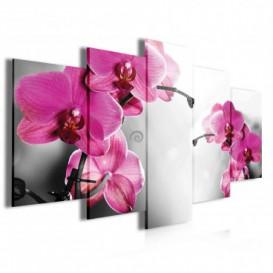 Obraz na plátne viacdielny - OB4042 - Ružové kvety