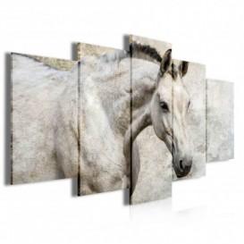 Obraz na plátně vícedílný - OB4044 - Koně