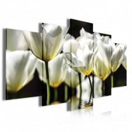 Obraz na plátne viacdielny - OB4050 - Biele kvety