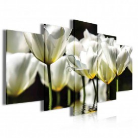 Obraz na plátně vícedílný - OB4050 - Bílé květy