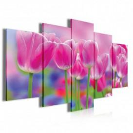 Obraz na plátne viacdielny - OB4058 - Ružové tulipány