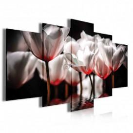 Obraz na plátne viacdielny - OB4062 - Červené kvety