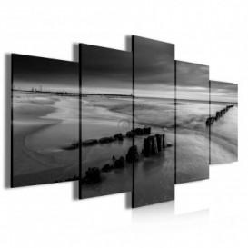 Obraz na plátne viacdielny - OB4063 - Čierno biele pobrežie