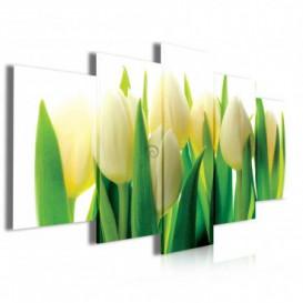 Obraz na plátne viacdielny - OB4066 - Žlto biele tulipány