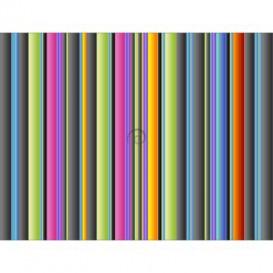 Fototapeta na stenu - FT5535 - Farebné pásy