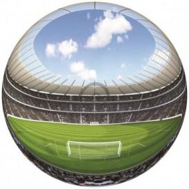 Fototapeta - FT0528 - Guľatá panoráma futbalový štadión