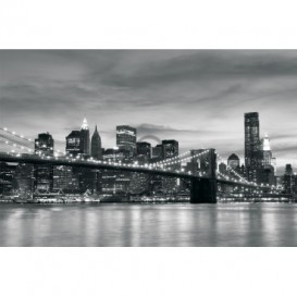 FT0296 312x219 New York