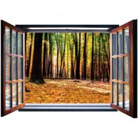 Fototapeta - FT5578 - Okno - jesenný les
