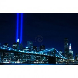 FT0310 208x146 New York