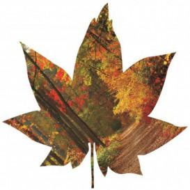 Fototapeta - FT5600 - Javorový list - jesenný les