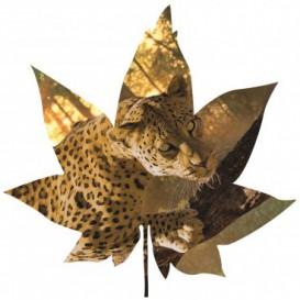 Fototapeta - FT5604 - Javorový list - leopard