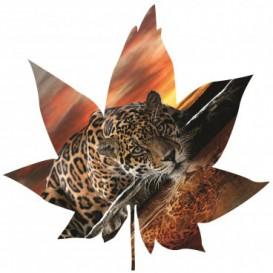 Fototapeta - FT5606 - Javorový list - leopard