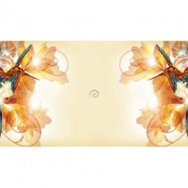 Rohová fototapeta - FT5616 - Kolibríky
