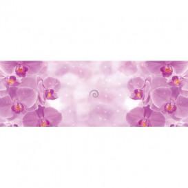 Rohová fototapeta - FT5619 - Fialové orchidey