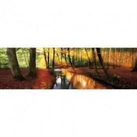 Rohová fototapeta - FT5636 - Jesenný les