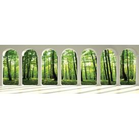 Rohová fototapeta - FT4066 - Zelený les - výhľad