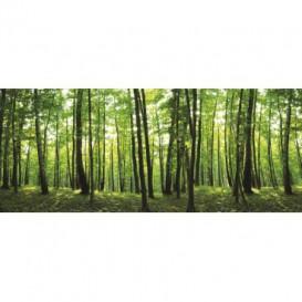 Rohová fototapeta - FT0152 - Zelené stromy