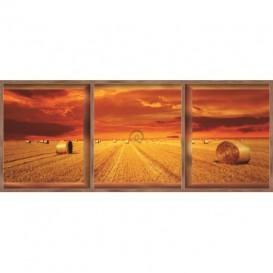 Rohová fototapeta - FT0052 - Západ slnka na poli - okno