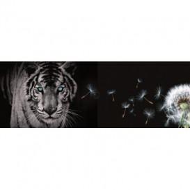Rohová fototapeta - FT0223 - Tiger a púpava