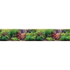 Panel kuchynská linka - FT5679 - Akváriové rastliny