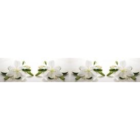 Panel kuchynská linka - FT5683 - Biele kvety